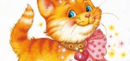 Котик-золотой лобик