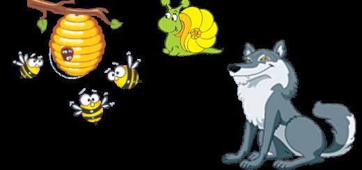 Волк, улитка и осы